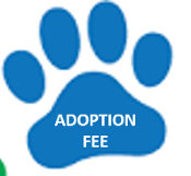Adoption Fee - $400 as of 8/5/2020