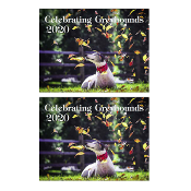 2 2020 CG WALL Calendars SHIPPING ADDED at checkout